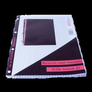 Rezerva caiet mecanic A5 50 file/set matematica EVOffice - ACOMI.ro