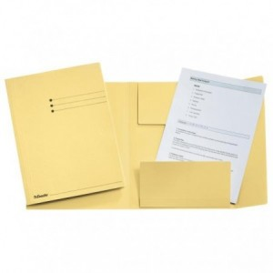 Dosar din carton, plic, 250 g/mp, verde pal, Esselte - ACOMI.ro