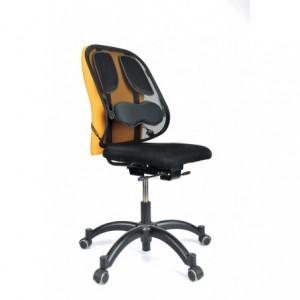 Suport ergonomic pentru spate, Professional Fellowes - ACOMI.ro