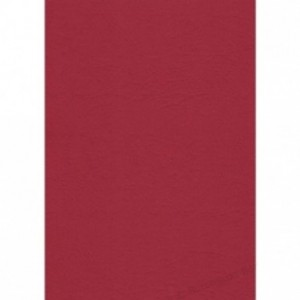 Coperti carton A4 rosu inchis Fellowes