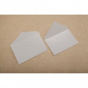 Plic 60x95mm pentru carti de vizita 160g/mp, 1000 buc/cutie, GPV - ACOMI.ro
