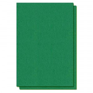 Coperti carton imitatie piele A4, 250g/mp, verde, ACM BRAND